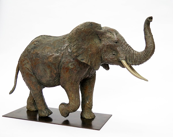 Namibie Pierre-Jean Chabert Galerie DON CARLI