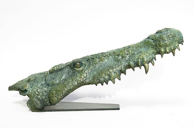 Crocodylus Niloticus Pierre Jean Chabert crocodiles Don Carli